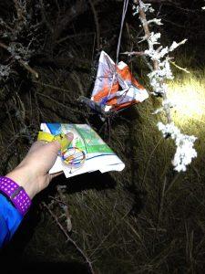 camilla-bergmann-marathontraening_thy-trail